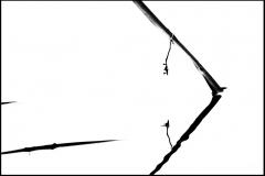 Amigdala Stampa fine art da arredamento-Chiara-Didone'- un viaggio nelle mie emozioni